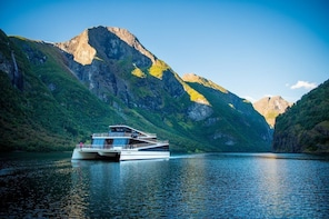 PRIVATE DAY TOUR FROM BERGEN TO SOGNEFJORD AND FLÅM RAILWAY