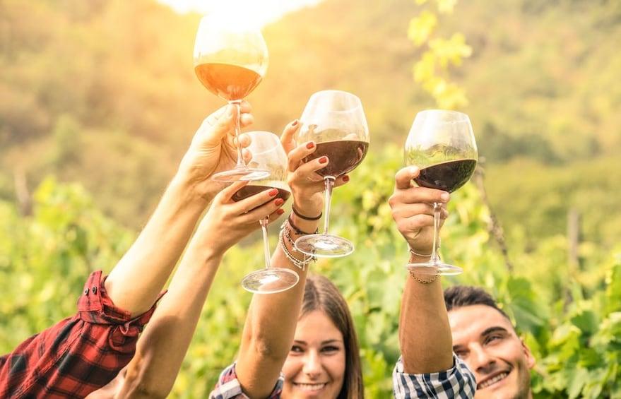 Show item 5 of 5. Valpolicella Wine Experience