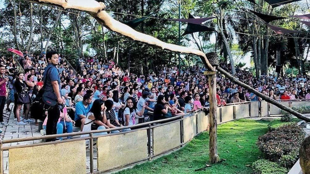 Show item 2 of 4. Davao Crocodile Park Tour [Half Day]