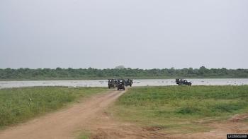 Udawalawe National Park Private Safari from Hikkaduwa
