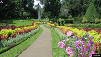 Kandy Day Tour from Beruwala (Private Tour)