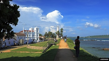 Virgin White Tea and Galle City Private Tour from Hikkaduwa