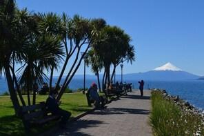 Puerto Varas: Osorno Volcano and Brewery Half-Day Visit