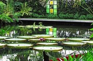 Penang Half Day City Tour Including Tropical Spice Garden