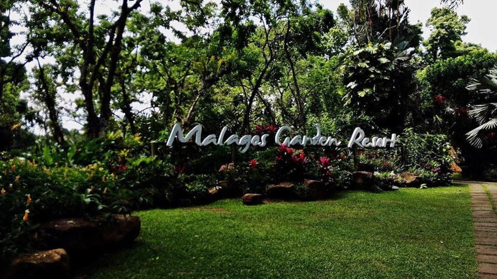 Show item 5 of 5. Davao Philippine Eagle Center and Malagos Garden Resort Tour