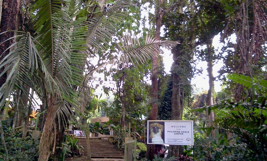 Show item 1 of 5. Davao Philippine Eagle Center and Malagos Garden Resort Tour