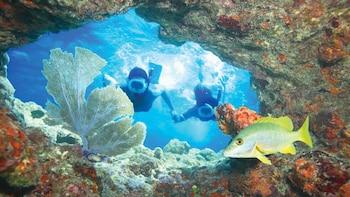 Key West Day Trip & Snorkel Tour From Miami