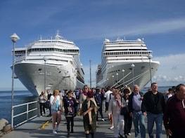 Shore excursion from Santos Terminal Cruise to São Paulo
