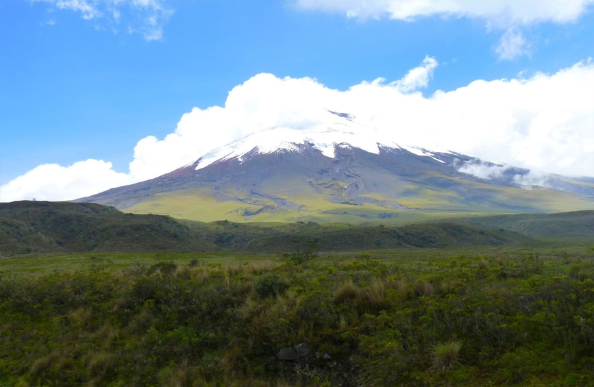 Show item 1 of 8. Cotopaxi Half DayTour With Optional Hotel Pick-Up & Drop Off