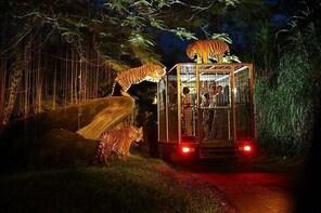 Night Safari Ticket and Return Transfer