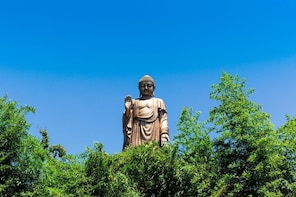 Lingshan Buddha & 3 Kingdom City of Wuxi Trip from Shanghai