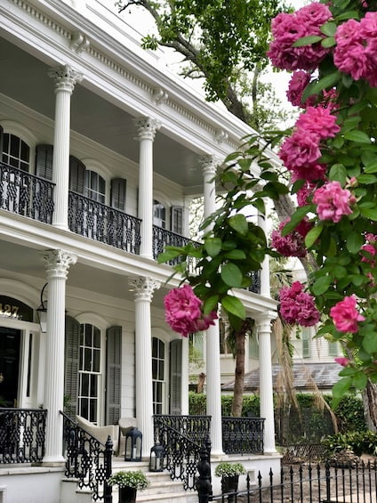 Show item 1 of 7. Garden District Mansions and Magnolias Tour