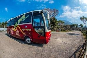 Tramvia Napoli: Pompeii Ruins & Vesuvius