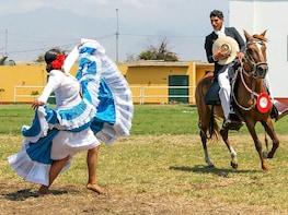 Show: Marinera & Peruvian Paso Horse