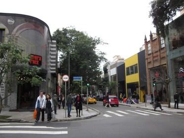 5-hour São Paulo Private Tour (Also pick-up airport)