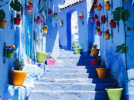 From Fez: Day Trip to the Blue Town of Chefchaouen