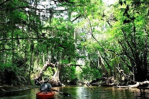 Wild & Scenic Loxahatchee Guided Tour