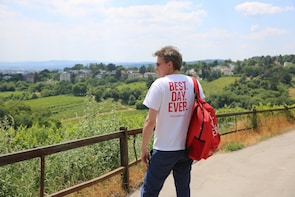 Vienna: Small Group Wine Tasting Tour with a Local Guide