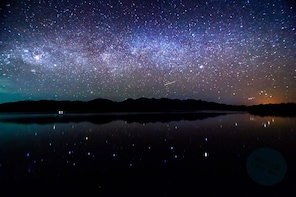 Firefly, Milkyway, and Plankton watching