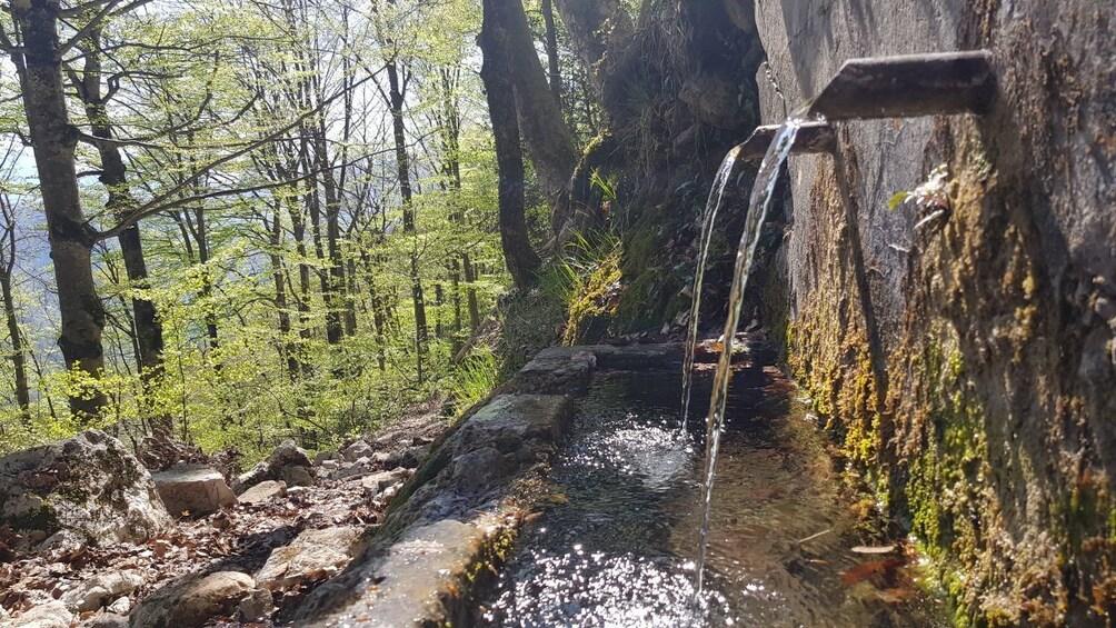 Show item 5 of 5. Hiking in Bosnia & Herzegovina-Cvrsnica -Vidikovac