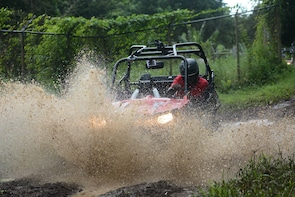 Annandale Rainforest & Waterfall Dune Buggy Tour