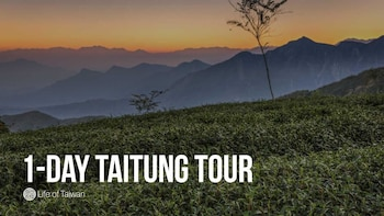1-Day Private Tour of Taitung, Taiwan