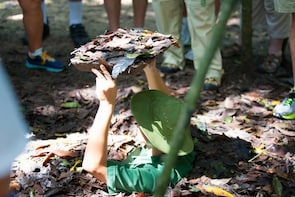 Mekong Delta and Cu Chi Tunnels Tour 1 Day From HCMC