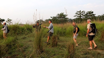 Chitwan National Park Jungle Safari Tour - 2 Nights / 3 Days