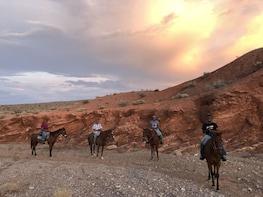 1.5 Hour Horseback Riding Tours