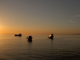 Chiloé Island: Full-Day Visit to Ancud City & Caulin Beach