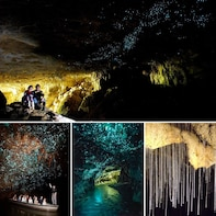 WAITOMO GLOWWORMS CAVE EXPRESS TOUR from Auckland