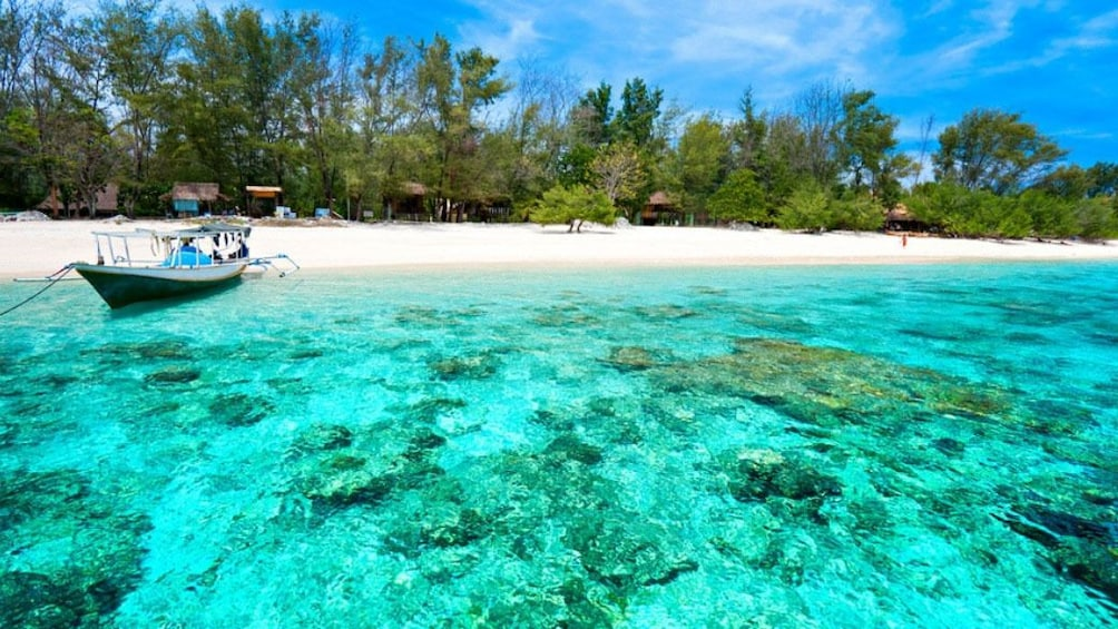 Show item 5 of 5. 3 Gili Lombok Snorkeling Tour with Private Boat