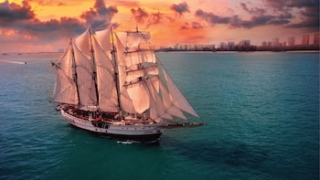 Royal Albatross Sunset Cruise with 3-Course Dinner