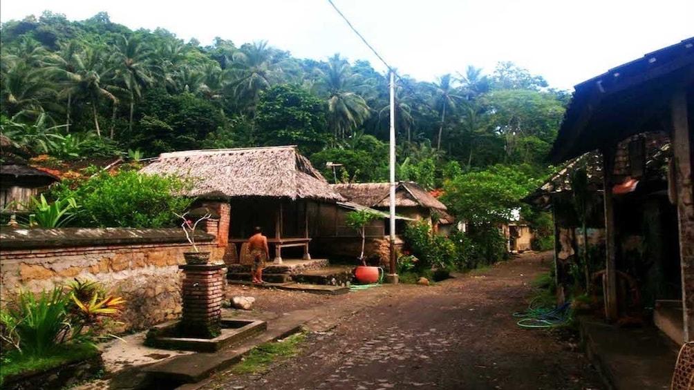 Tirta Gangga & East Bali Trekking