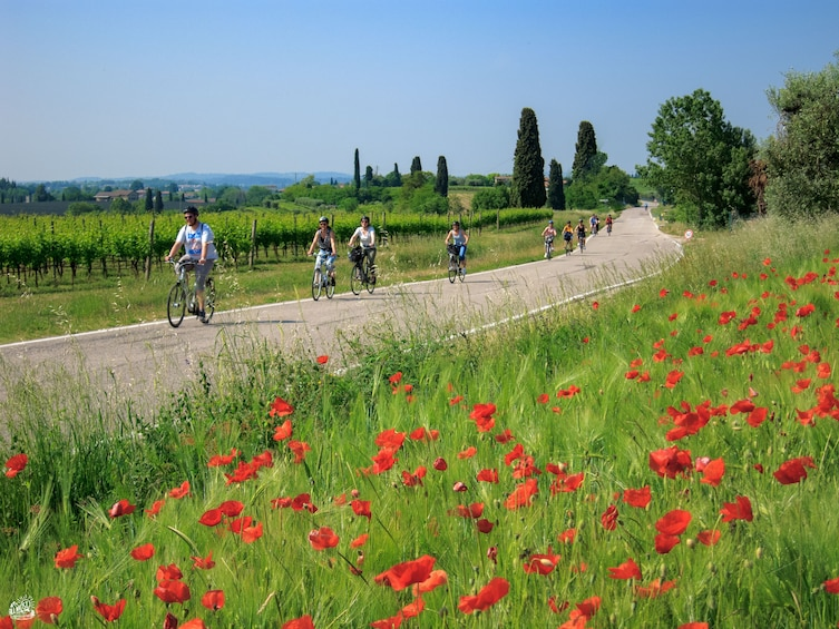Show item 2 of 7. The lands of Custoza - Garda bike ride for all people