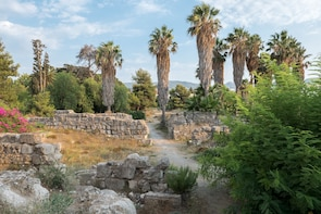 Half-Day Sightseeing in Kos