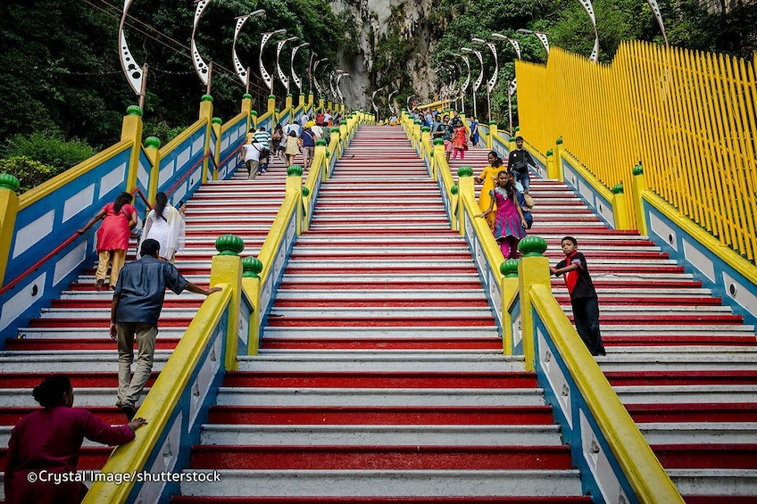 Show item 5 of 10. Full Day Tour of Cameron Highlands with Batu Caves Stopover