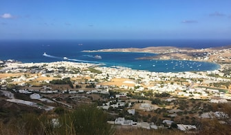 Veggie/Vegan/Authentic foodie tasting experience of Paros