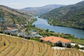 Day Trip to Douro Valley from Porto