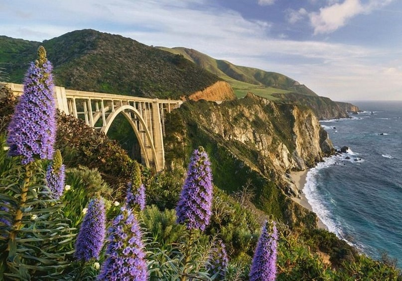 Show item 3 of 7. California Big Sur Self Guided Driving Tour