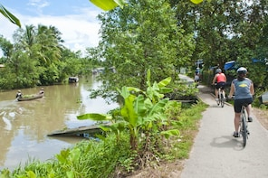 Small-group Mekong Delta Classic tour with My Tho & Ben Tre