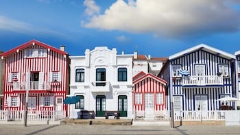 Aveiro Half-Day Tour with Moliceiro River Cruise from Porto
