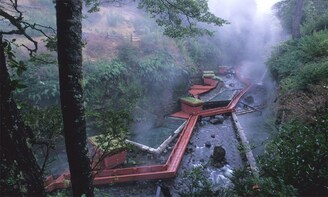 Full Day Coñaripe Geometric Hot Springs - Chile