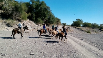 Baja Desert Horseback Riding Tour