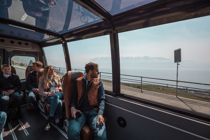 Panoramic Wine Tour in Lavaux