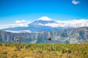 Hakone Day Trip & Lake Ashi Cruise from Tokyo — Full Day