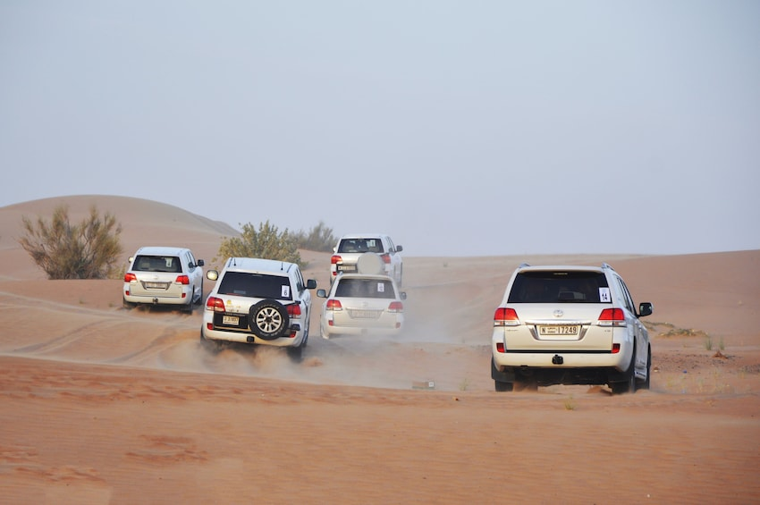 Show item 10 of 10. Dune Bashing with BBQ Dinner