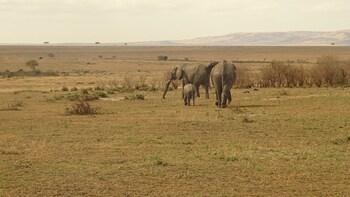 3 Days 2 Nights Amboseli National Park Safari