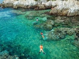 Speedy Snorkel Experience