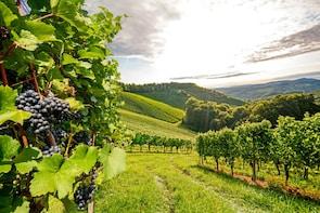 2-Day 'Old World Wine Tour Odyssey'